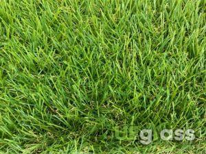 Ландшафтная искусственная трава 35 мм UF Grass Light Green